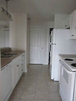 Looking for a roomate / 2 bedroom appartement