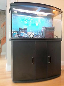 Aquarium Fluval Bow front 46 gallons