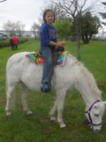 Pony Birthday Party - We bring the ponies to you (204) 663-1000