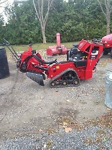 Earl's Stump Grinding Service/ tree removal/ trimming /chipper