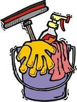 House cleaner available in Havelock/Norwood and Surrounding Area