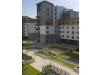 Unfurnished Three Bed Apartment in Western Harbour Development - Edinburgh - Available 06/09/2017