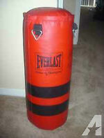 punching bag $50 OR BEST OFFER