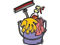 Domestic cleaner in Carluke & surrounding areas with slots available