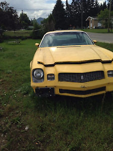 1980 Chevrolet Camaro Berlinetta Coupe (2 door)