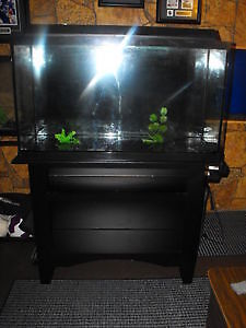 40 Gallon Aquarium Complete kit