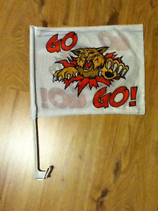 Wildcats  flags &  pins  $5.00 For All