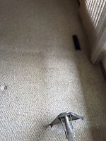 Carpet Cleaning & Flood Specialists - Wnndsor/Essex - Same Day