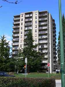 6th Floor 1 Bed Rm on Victoria Park Available Feb 1