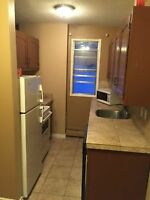 BEAUTIFULLY RENEVATED 1 BEDRM CONDO FOR RENT !A.S.A.P.MAR .1..