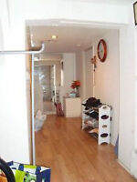 Newly Renovated Bright and Cozy 1 Bedroom Basement Apartment