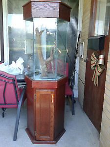 Aquarium, Fish tank, 36 Gallon w/ light, glass cover and stand