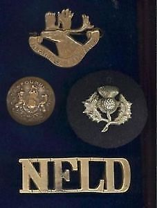 WW1 Newfoundland Regiment badges and others