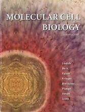 Molecular Cell Biology by Harvey Lodish (Hardback, 7th edition) Glenroy Moreland Area Preview