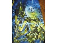 Iron Maiden VANS Shorts