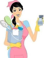 Cleaning lady at home or office