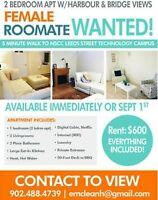Seeking Female Roommate | Immediate Occupancy