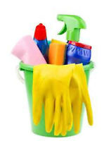 Good Experienced Detailed Cleaner Available