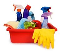 Cleaner with experience