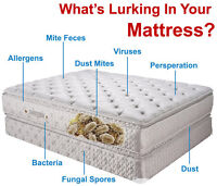 Mattress Cleaning Service, Warranty Approved