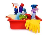Do you need help With the cleaning? House cleaning available