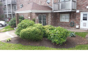 Large 1 Bd +Balcony AUGUST 1 in Stanley Park (near Clayton Park)