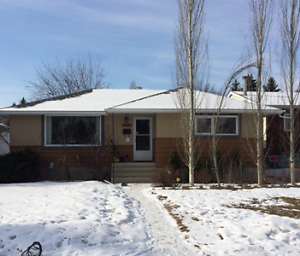 Beautifully Renovated 2 Bedroom Main level! 12336 St Albert Tr