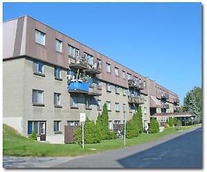5.5 à louer Le Bienville - 6240 Ave. Bienville, Suite 103A, - B