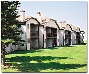 Pines Of Normanview - 1060 Dorothy St.