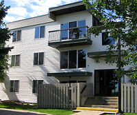 Leewood Village - 3845 Millwoods Rd.