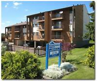 Inglewood Terrace Apartments - 3710 52 Ave.