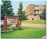 Meadowside Estates - #115, 11919-162 Ave.