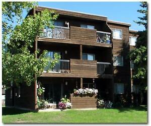 Bear Ridge Manor - 10010 Prairie Road
