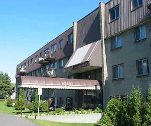 5 1/2 (3 Bedroom) Apartment - Room Available [Brossard]