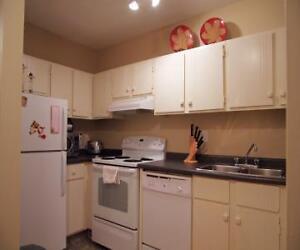 Suncourt Place - 16186-121 St. Edmonton Edmonton Area image 3