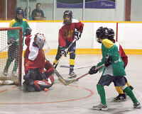 Kid's Ball Hockey League WBBHL Register today and Save!