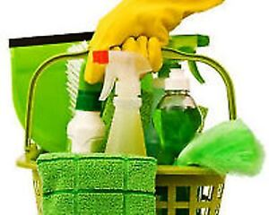 APPARTEMENTS AND CONDOS CLEANING SERVICES