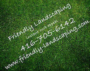 SPRING CLEAN UP/ GRASS MOWING / LAWN MAINTENANCE