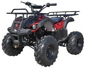 New Mid Size 125cc Kids ATVs for $649! or $29 a Month 0%