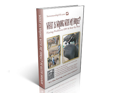 """Fixing Problems DIY & Step-by-Step: """"What Is Wrong with My Horse"""" by Keith Hosman, Certifed John Lyons Trainer"""