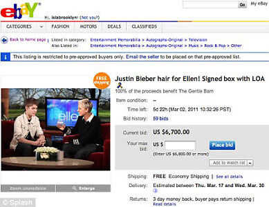 Only on eBay: the pope's skullcap and Justin Bieber's hair clippings