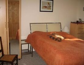 Large double room £400 pcm (inc Bills, free WiFi) or single room £330 pcm in 3 bed house