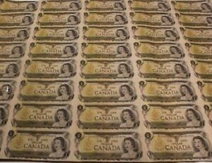 Sheet of 40 uncut CAD dollar bills - mint cond, in original tube