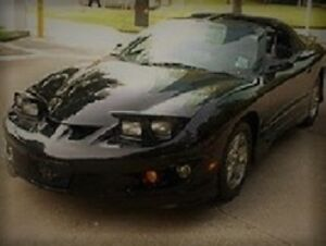 I am looking to purchase this style firebird. OR camaro