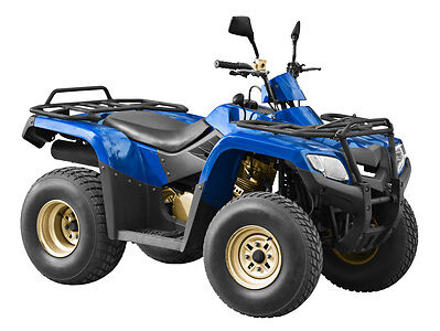 500 Quad Bike Buying Guide
