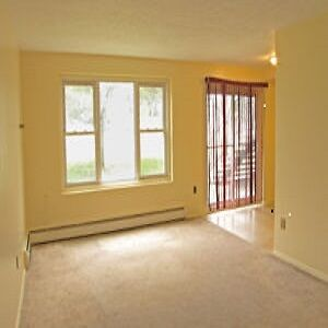 Large 1 bedroom apartment, available March 1st