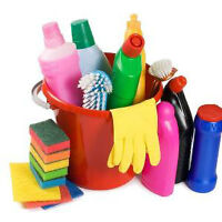 Cleaning lady enveable
