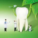 Dentalmalls