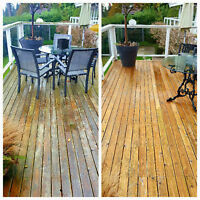 Exterior painting/staining: Decks, fences, sheds, houses.
