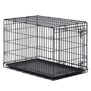 Great Choice Wire Dog Crate and Foam Insert Bed